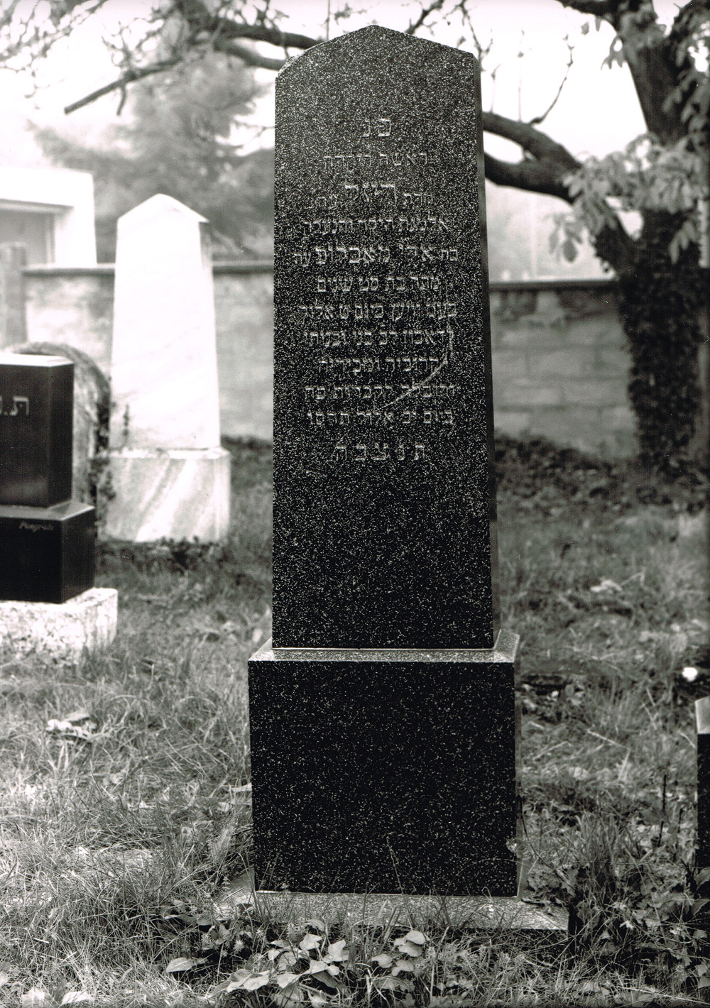 Grabstein Machlup Theresia – 30. August 1906, Foto 1993